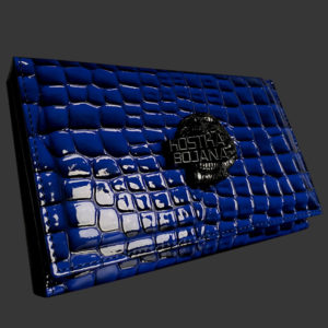 Brush bag blue dragon
